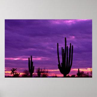 Puesta del sol, Scottsdale, Arizona Poster