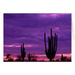Puesta del sol, Scottsdale, Arizona Tarjeta De Felicitación