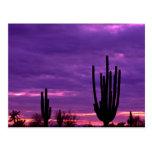 Puesta del sol, Scottsdale, Arizona Tarjetas Postales