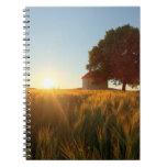 Puesta del sol sobre campo de trigo libros de apuntes