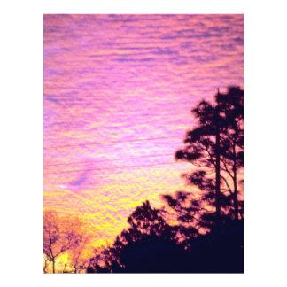"""Puesta del sol sobre el condado de Citrus, la Flor Folleto 8.5"""" X 11"""""""