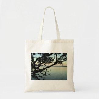 Puesta del sol sobre el lago con la silueta del ár bolsas