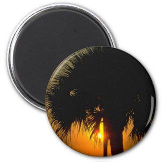 Puesta del sol sobre las palmeras iman para frigorífico