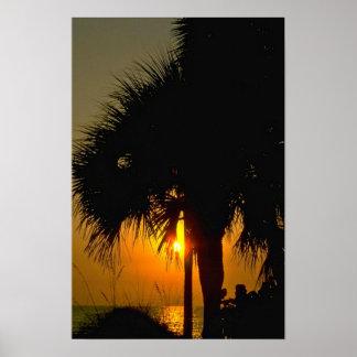 Puesta del sol sobre las palmeras poster