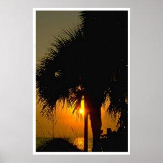 Puesta del sol sobre las palmeras impresiones