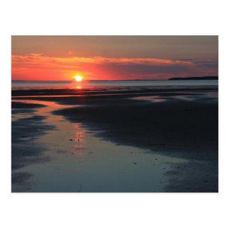 Puesta del sol sobre los planos, fauna de la bahía postal
