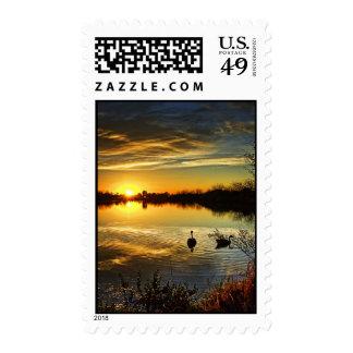 Puesta del sol soñadora sello