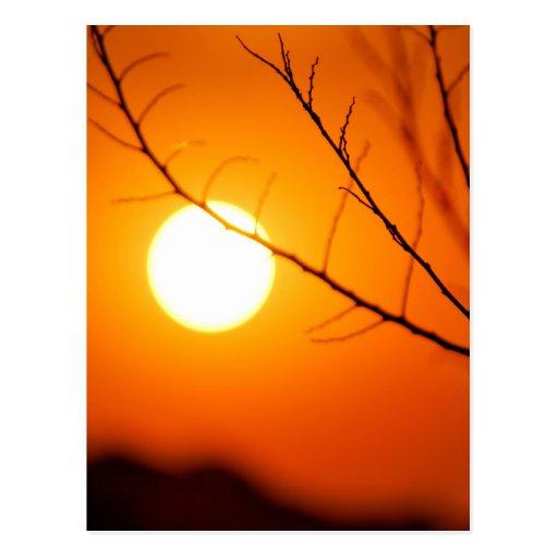 Puesta del sol suspendida postal