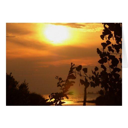 puesta del sol tarjetón