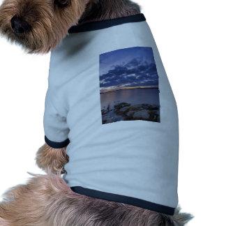 Puesta del sol tranquila camiseta con mangas para perro