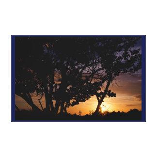 Puesta del sol tropical, árbol del mangle, playa impresión en lona