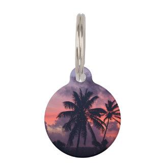 Puesta del sol tropical brillante placa de mascota