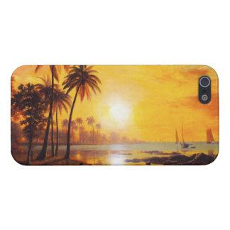 Puesta del sol tropical con el caso del iPhone 5 d iPhone 5 Carcasa