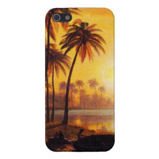Puesta del sol tropical con el caso del iPhone 5 d iPhone 5 Funda