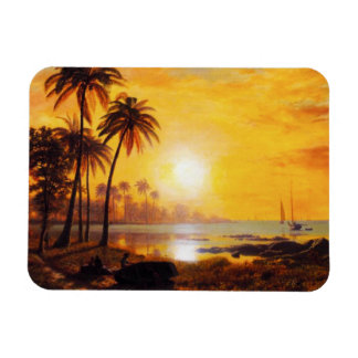 Puesta del sol tropical con el imán de los barcos