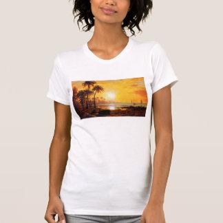 Puesta del sol tropical con la camiseta de los