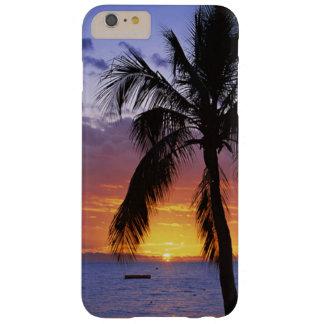 Puesta del sol tropical con la palmera funda de iPhone 6 plus barely there