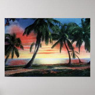 Puesta del sol tropical de Key West la Florida Impresiones