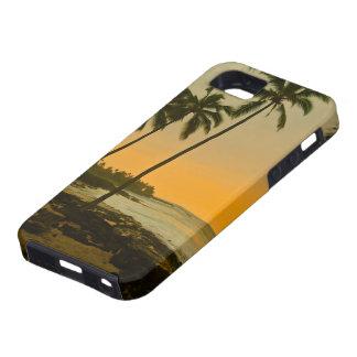 Puesta del sol tropical de la playa iPhone 5 fundas