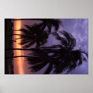 Puesta del sol tropical de la playa poster