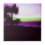 Puesta del sol tropical de la playa y de árboles e azulejo cerámica