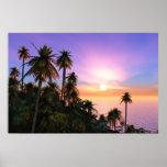Puesta del sol tropical impresiones