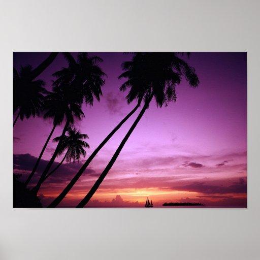 Puesta del sol tropical poster