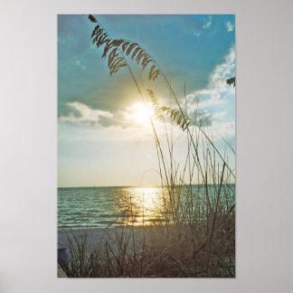 Puesta del sol y avena del mar impresiones