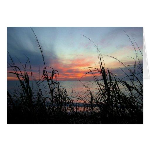 Puesta del sol y avena del mar tarjeta de felicitación