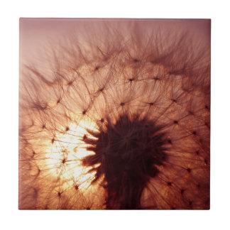 Puesta del sol y diente de león tejas  cerámicas