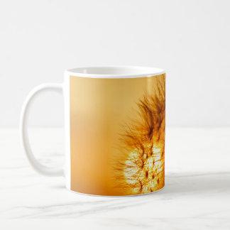 Puesta del sol y diente de león taza de café