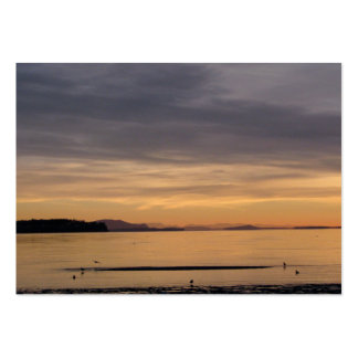Puesta del sol y pájaros de mar tarjetas de visita grandes