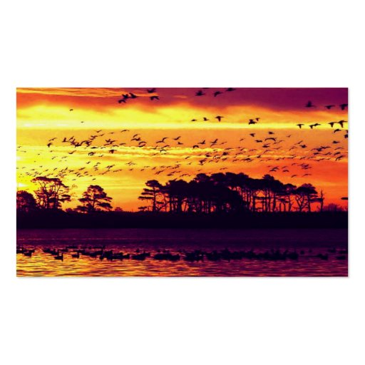 Puesta del sol y pájaros tarjetas de visita