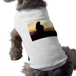Puesta del sol y viento ropa de perro