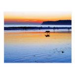 Puestas del sol del Point Loma de las playas Postal