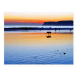Puestas del sol del Point Loma de las playas Tarjetas Postales
