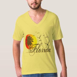 Puestas del sol y gaviotas de la Florida Playera