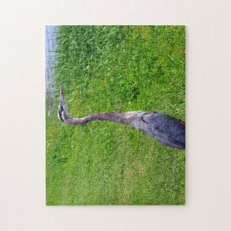 Puesto de observación del pájaro puzzles con fotos