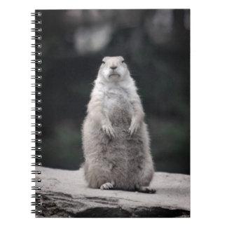 Puesto de observación del perro de las praderas spiral notebooks