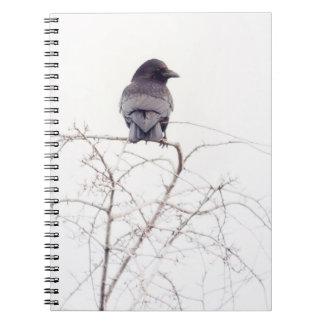Puesto de observación negro del pájaro del grajo cuaderno