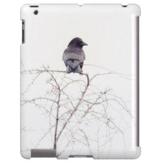 Puesto de observación negro del pájaro del grajo funda para iPad