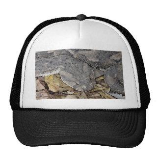 Puff adder trucker hat