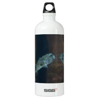 Puffer Fish Mirage SIGG Traveler 1.0L Water Bottle