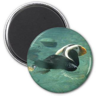 Puffin 2 Inch Round Magnet