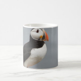 Puffin Bird Antarctic Nature Coffee Mug