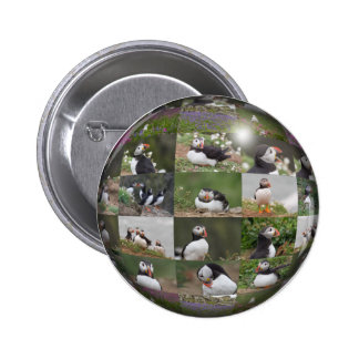 Puffin Collage Pinback Button