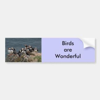 Puffin Convention Bumper Sticker