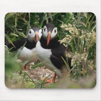 Puffin Couple Mouse Pad
