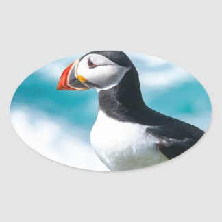 Puffin Fratercula arctica at Látrabjarg Iceland Oval Stickers