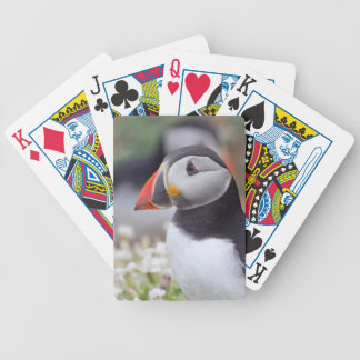 Puffin from Skomer Bicycle Playing Cards